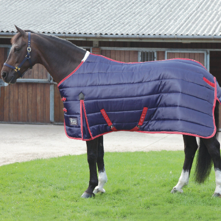 Shires Chillcheeta Stable 300g Standard Neck Navy & Red